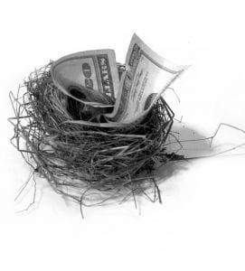 A hundred dollar bill in a bird nest